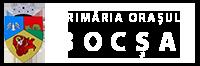 Primaria Bocsa Logo